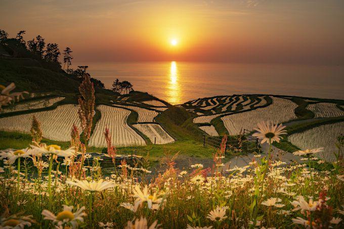 奥能登の白米千枚田、曽々木海岸、仁江海岸の夕陽