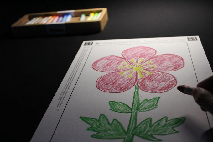 自分で描いた花々が咲き誇っていく…