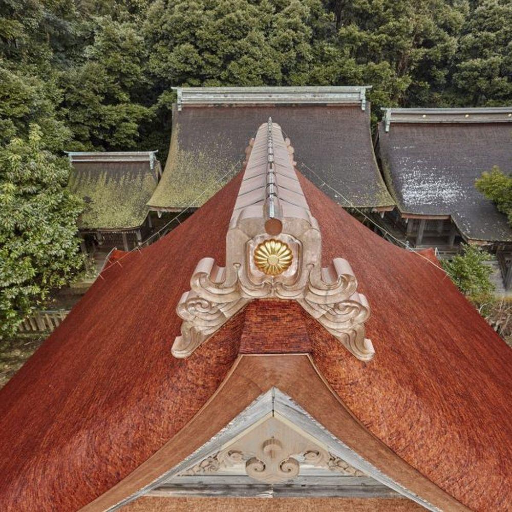 拝殿や本殿も見どころの一つ