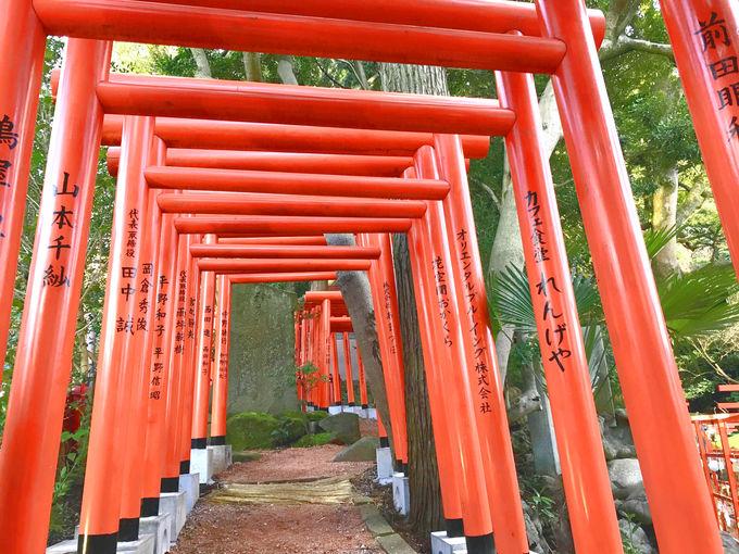 金沢「石浦神社」の101基の鳥居!新たな人気パワースポット