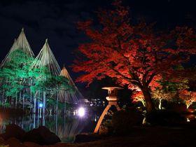 幻想的な「金沢城・兼六園ライトアップ 秋の段」で紅葉を満喫