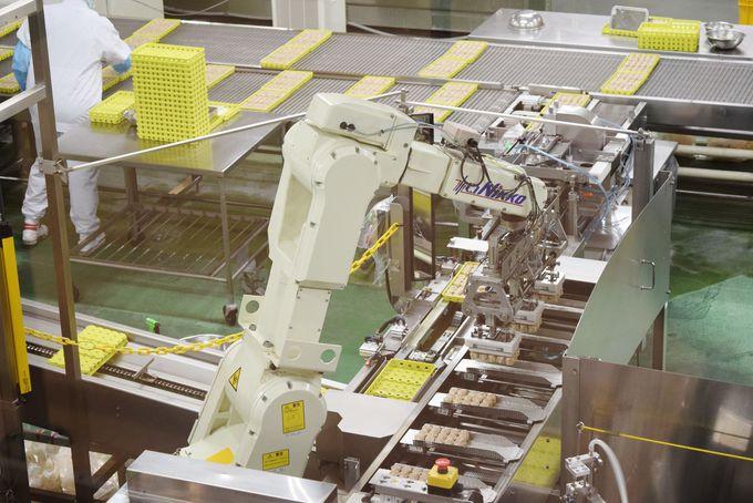 圧巻の規模!工場見学ゾーンでシウマイの製造工程を学ぶ