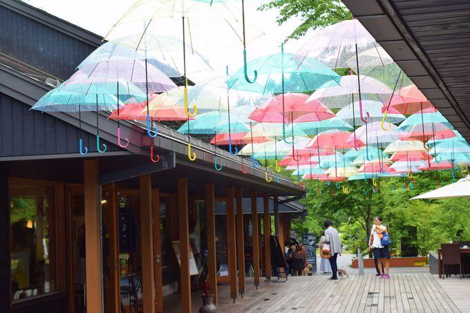 実は近い!「軽井沢」のおしゃれスポットを散策