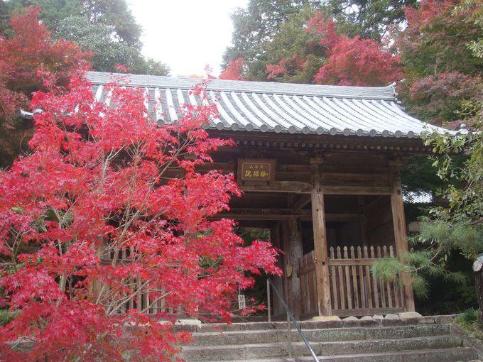 10.伽耶院/三木