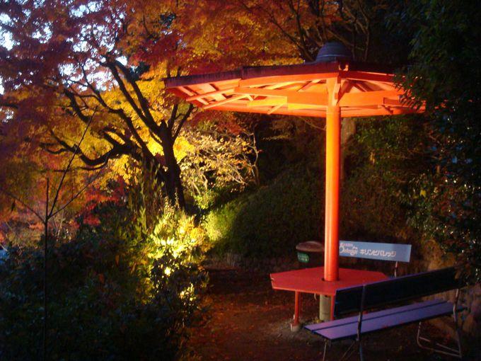 紅葉の中で一休み