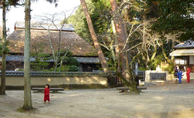 「伊賀流忍者博物館」で、忍者について深く知る