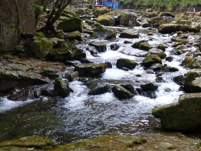 中間地点は「百畳岩」。赤目五瀑もあとふたつ