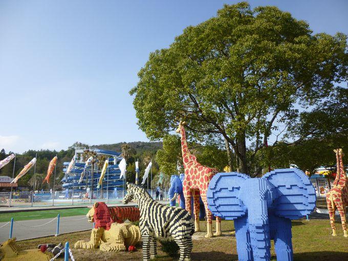 プールにステージに、一日中楽しめる東条湖おもちゃ王国