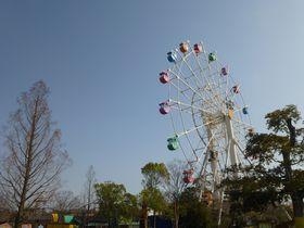 子連れ・赤ちゃん連れ旅行、三世代旅行に最適☆東条湖おもちゃ王国
