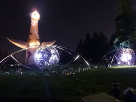真夏の万博記念公園。ひまわりとイルミネーションで夏を満喫!