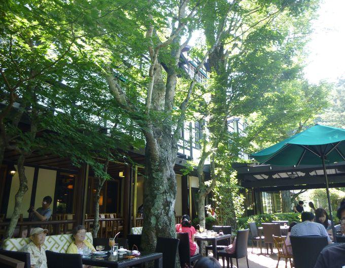 緑あふれるカフェテラスで優雅なひとときを味わえる。