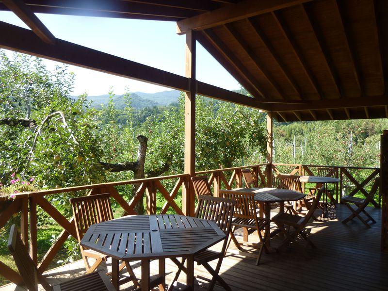 テラス席は、りんご畑が一望できるカフェ。