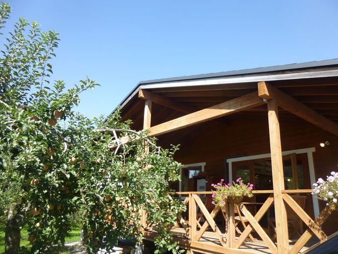 かわいいログハウスが目印の「阿部りんご園」。