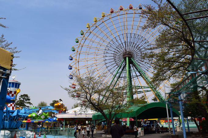 花の名所としても知られる「華蔵寺公園遊園地」