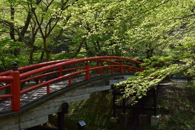 散策は、湯元通り〜河鹿橋まで足を延ばそう