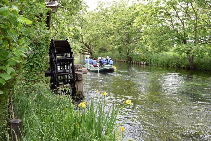 2:クリアボート体験やわさび漬け体験を楽しむ