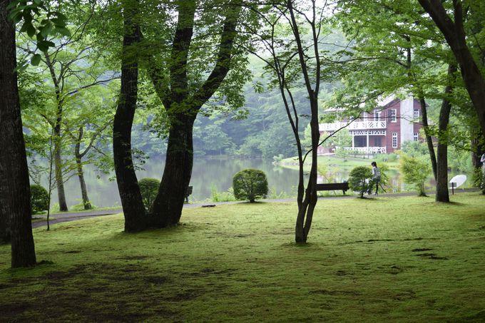 第1話の記念撮影のシーンは「軽井沢タリアセン」