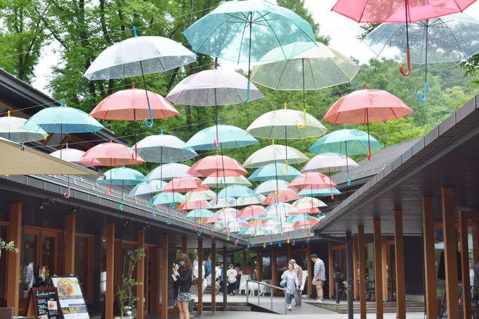 5.軽井沢/長野県
