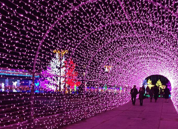 500万球の光の装飾!関西最大級のイルミネーション