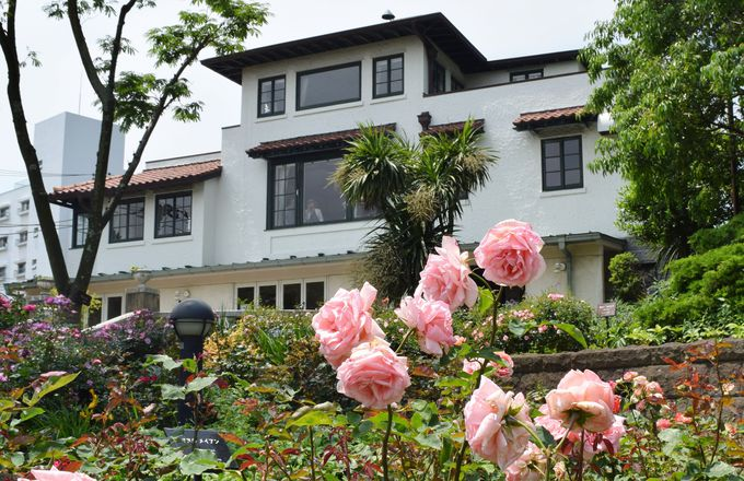 バラが咲く時期に訪れたい!山手111番館「カフェ・ザ・ローズ」