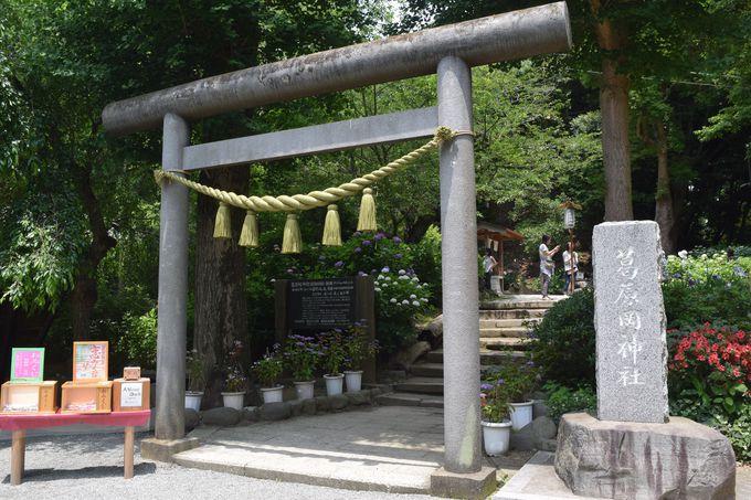 葛原岡神社に到着
