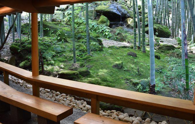 竹庭の奥にたたずむ休耕庵