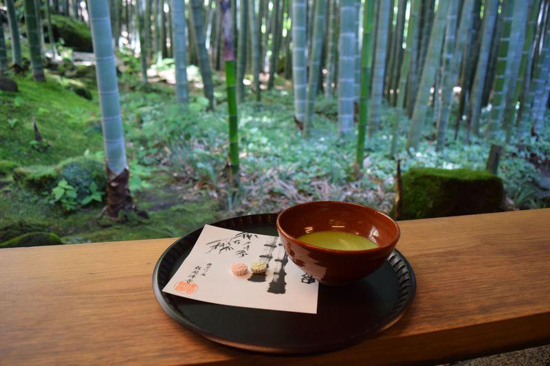 鎌倉・報国寺「休耕庵」でお抹茶を。竹林散策は朝一番がオススメ