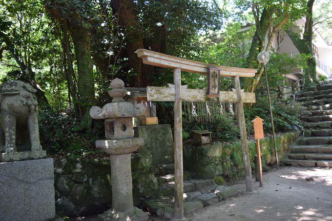 山の神様も。海と山に包まれた志賀島を感じる場所