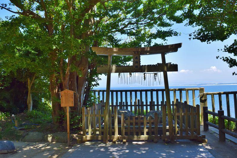 海神の総本社。「志賀海神社」は森と海に包まれた志賀島の神様