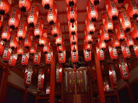 神戸・湊川神社の見どころ。フォトジェニックな楠本稲荷神社にも注目!