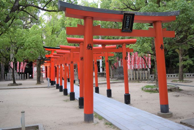 フォトジェニックな異空間。境内末社「楠本稲荷神社」
