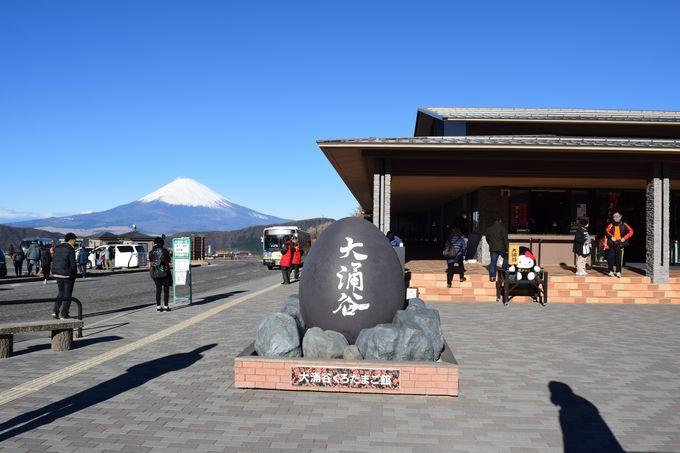 大涌谷くろたまご館などの周辺施設&富士山のビュースポット