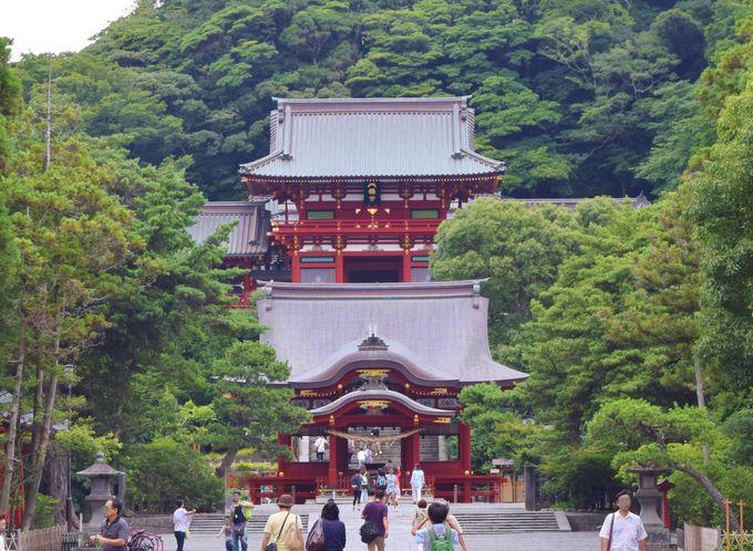 【1日目:午前】鶴岡八幡宮