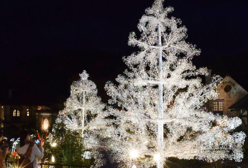 心ふるえる冬景色。「箱根ガラスの森美術館」クリスタルガラスのツリー