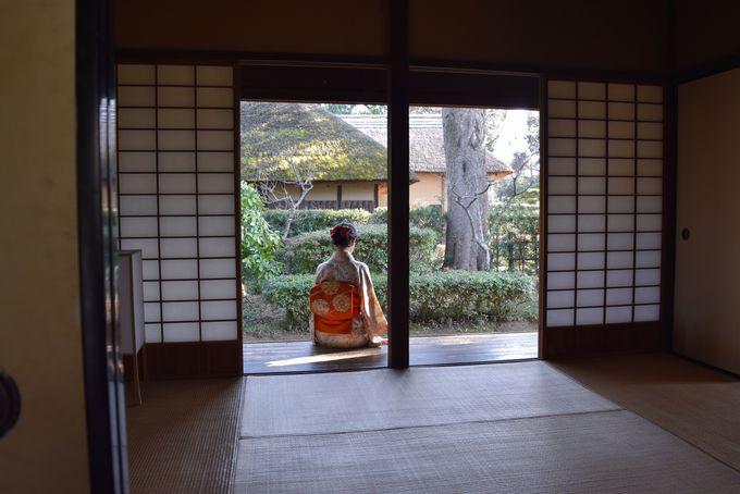 江戸時代にタイムスリップした気分で写真を撮ろう