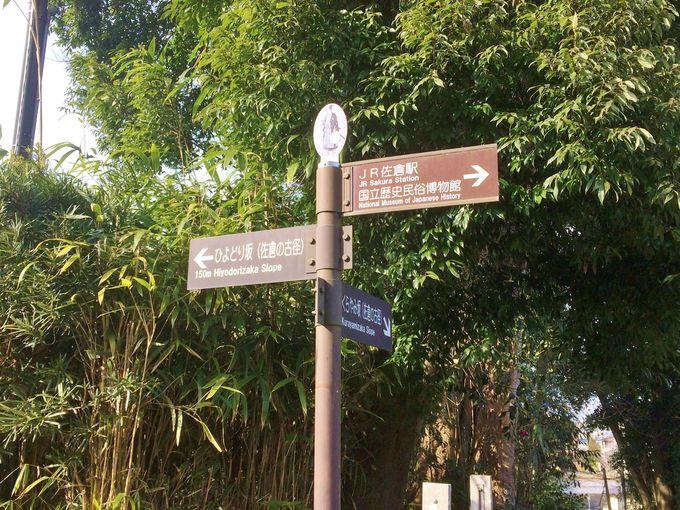 移動手段はレンタサイクルがオススメ。まずは佐倉城址公園からスタート