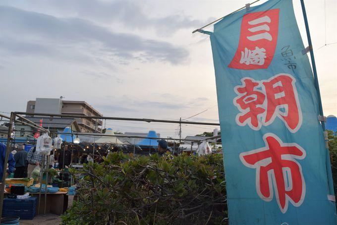 三崎朝市は毎週日曜5時開始!早起きして会場に着こう