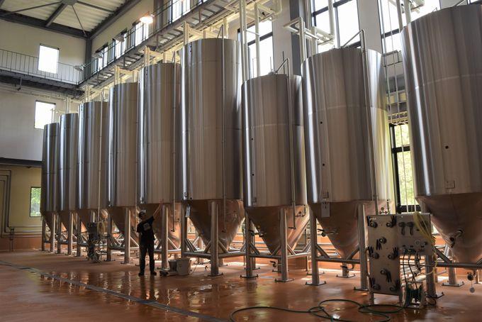 1,2Fは醸造所。土日祝日はブルワリー見学ツアーも開催