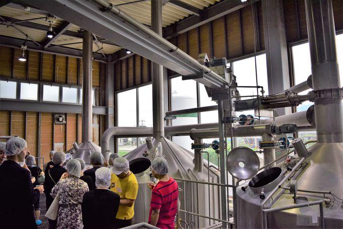 「大人の醸造所見学ツアー」の流れと見どころ