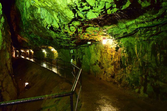 冒険心が湧き起こる。尾去沢鉱山で坑道探検&純金砂金採り体験