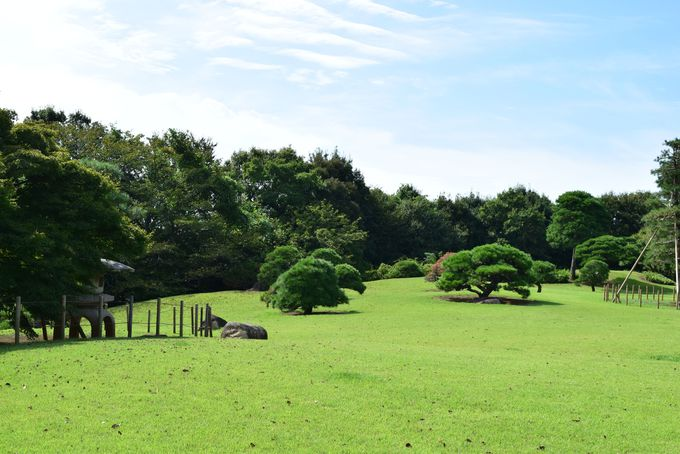 佐倉藩主の邸宅「旧堀田邸」で和の美しさに触れる