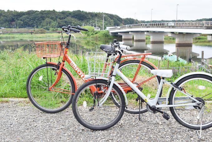 午後の過ごし方は?サイクリング・観光船・佐倉草ぶえの丘!