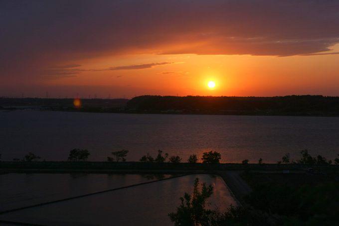 ドライブの締めくくりは、印旛沼サンセットヒルズで美しい夕日を