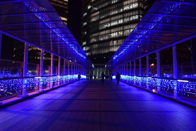 ブルーの光の道がつなぐイルミネーション