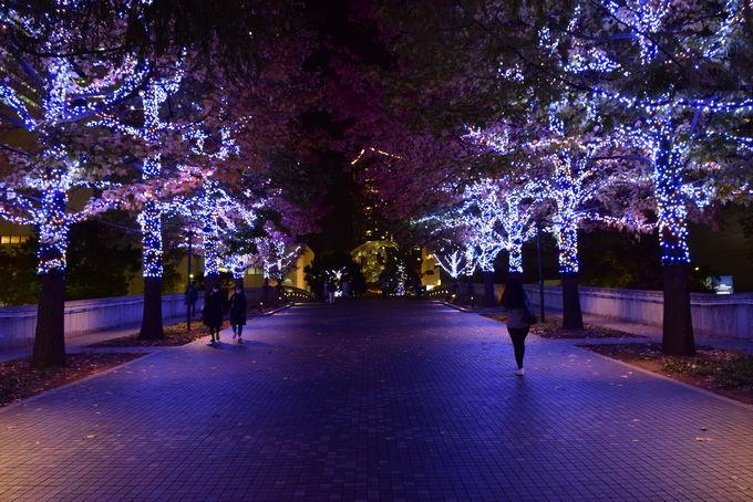 ヨーヨー広場からグランモール公園