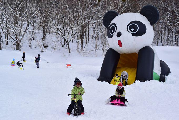 キッズパーク「フジワラキッズランド」で雪遊びを満喫