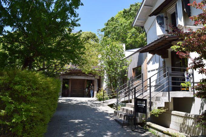 湘南に唯一残る酒蔵「熊澤酒造」