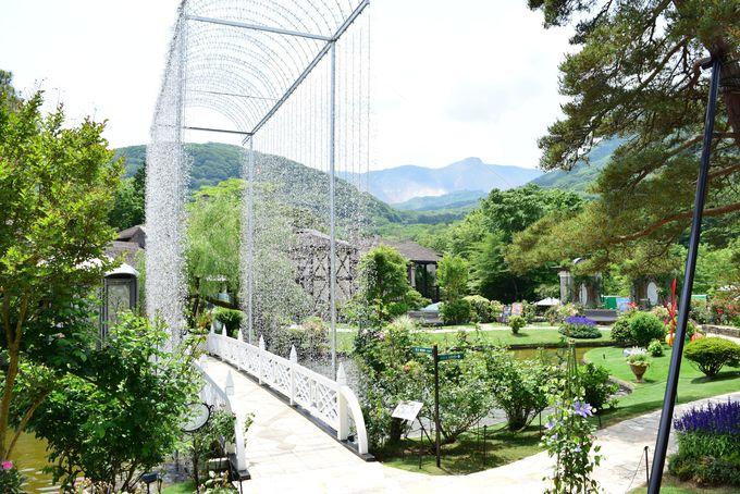 緑に包まれる庭園をお散歩しよう