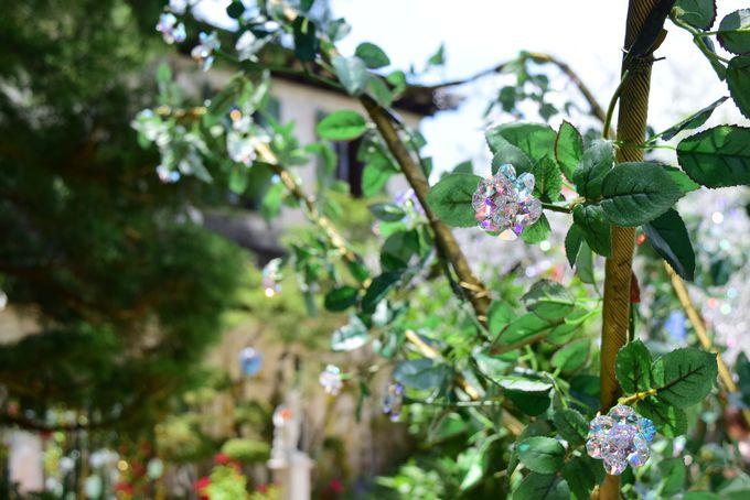 初夏のバラと「ヴェネチアン・グラスのローズ・ガーデン」
