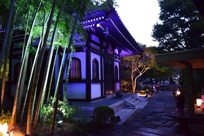 中心エリア1:長谷寺・収玄寺・御霊神社